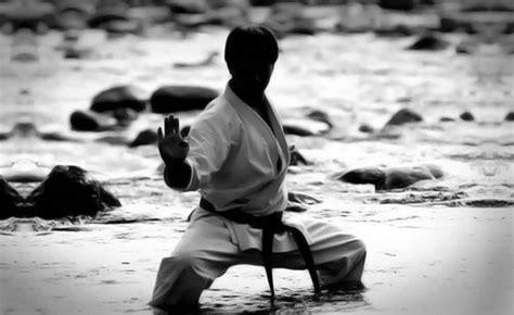 the dynamics of a black belt karate by jesse the dynamics of a black belt karate by jesse