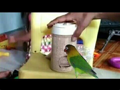 Tempat Pakan Burung tempat pakan burung dari kaleng bekas