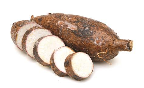 bazar sri lanka cassava manioc tapioca මන ඤ ක ක