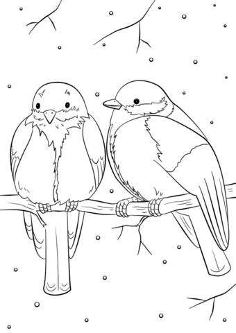 angry birds winter coloring pages winter birds coloring page free printable coloring pages