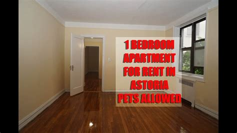 pet friendly  bedroom apartment  rent  astoria queens nyc youtube