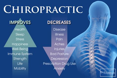 Chiropractic Description by Chiropractic Improves Anti Oxidant Levels