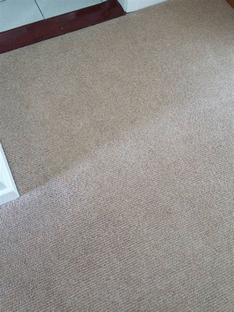 rug cleaning chester carpet cleaning chester le call 07807 25470