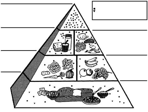 coloring pages food guide pyramid casey anthony food pyramid for kids coloring page