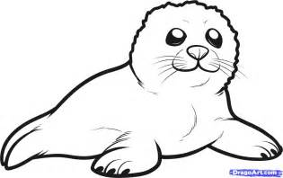 How To Draw A Seal Pup Step 6 sketch template