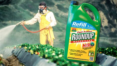 The Roundup by Working With Roundup Increases The Risk Of Cancer