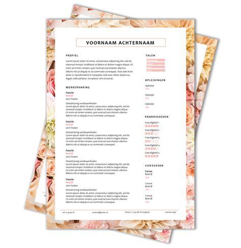 layout van een blog download cv voorbeeld 43 cv template cv voorbeelden nl