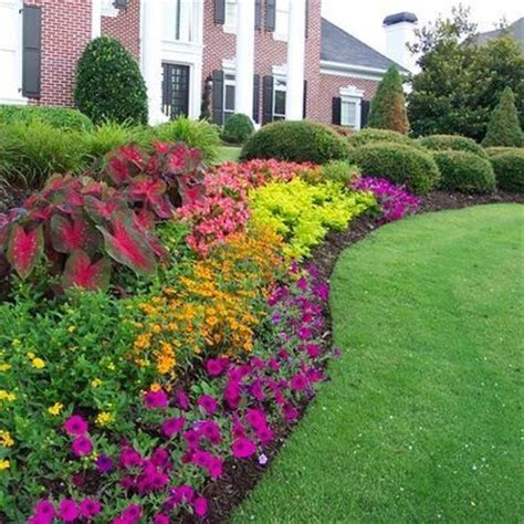 flower bed landscaping ideas garden beds planters flowers trees pinterest elephant