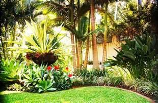 Tropical Backyard Design Ideas Tropical Garden Design With Palm Tree Homefurniture Org