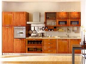 Cabinet Kitchen Design by Kitchen Cabinet Designs 13 Photos Kerala Home Design