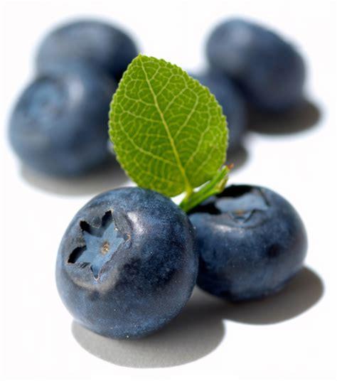Fruits Kismis Apricot Cranberry Blueberry Raisin Murah myrtille bio
