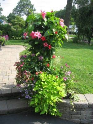 Summer Planter Ideas by Summer Planters Ideas For The House