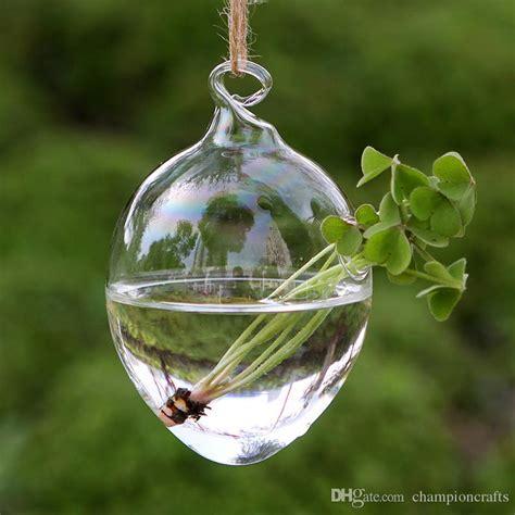 Decorative Flower Vase 8x12cm Glass Egg Planters Water Culture Green Plants