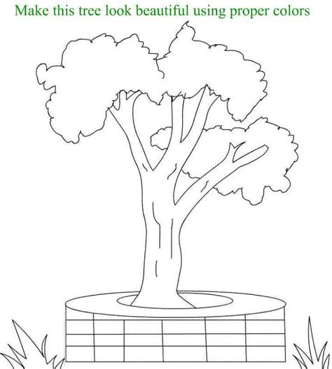 Beautiful Tree Coloring Page Printable For Kids Beautiful Trees Coloring Page