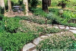 garden designers roundtable lawn reform