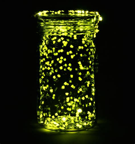 Lighted Mason Jars by Battle Ready 5 Insects Prepared For War National