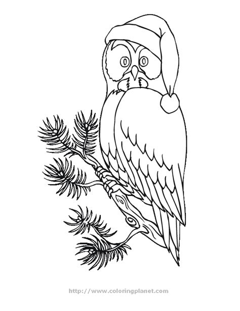 holiday owl coloring page printable owl coloring pages az coloring pages