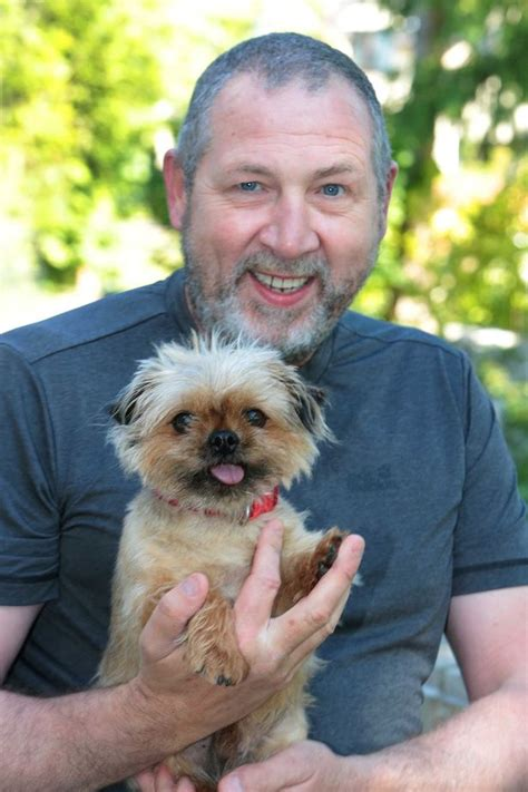 yorkie bloated stomach owner blows 163 200 on vet bill for his terrier s trapped wind mirror