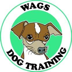 puppy classes seattle wags husdjurspassning georgetown seattle wa usa telefonnummer yelp