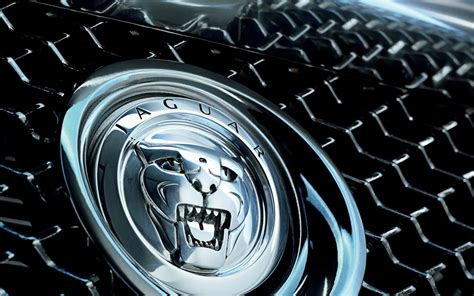 black jaguar car wallpaper jaguar logo wallpapers pictures images