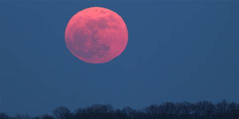 pink moon april pink moon april 2017 see the full moon on april 10