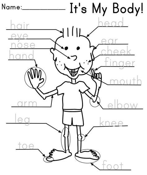 activities kindergarten esl 17 best images about parts of the body on pinterest