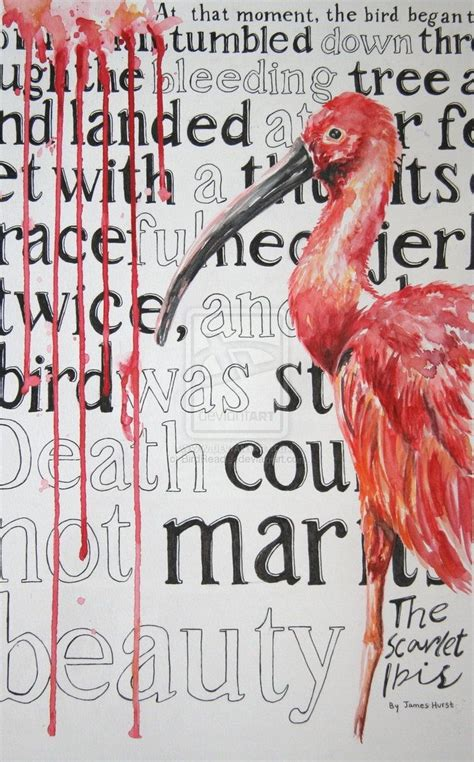 does doodle die in the scarlet ibis 17 best images about the scarlet ibis on