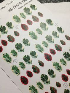 printable leaves for miniature plants 1000 images about mini pre print plant flower on