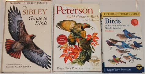 first look peterson field guide to birds of north america