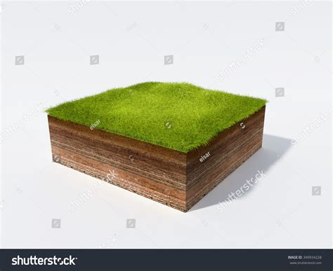 ground section 3d illustration cross section ground grass stock