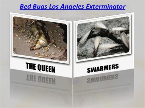 bed bug exterminator los angeles bed bugs los angeles exterminator