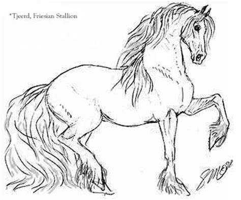 coloring pages of friesian horses horsepoems kaimanawakidz