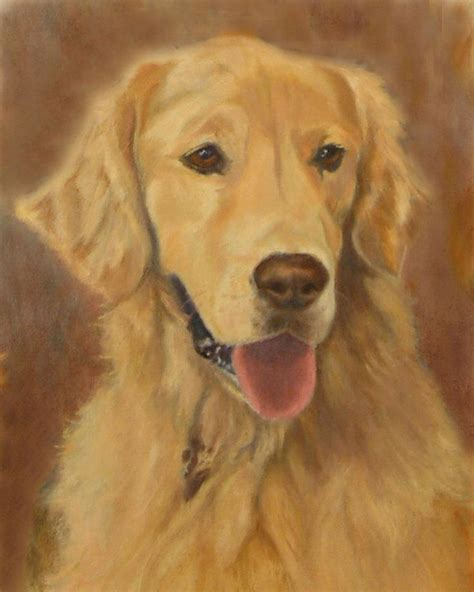golden retriever eyebrows 17 best images about on loyalty and paintings