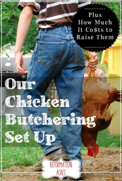 How Much Does It Cost To Lift A House by Raising And Raising Chickens On
