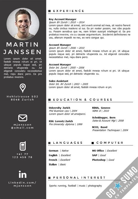 Curriculum Vitae Template by The 25 Best Cv Template Ideas On Creative Cv