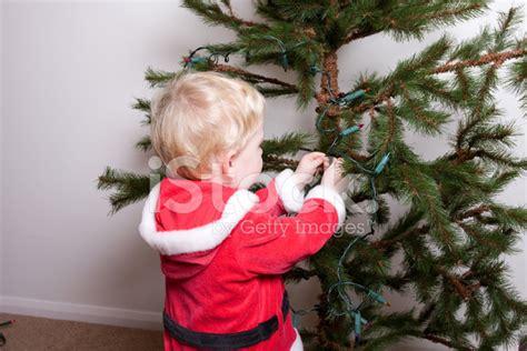 fixing tree lights santa boy fixing tree lights stock photos