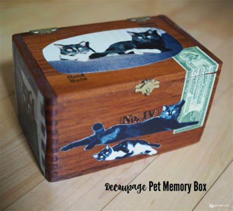 Decoupage Memory Box - how to make your own diy pet bowls