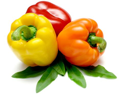 bell peppers evolutionary nutrition official site