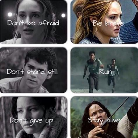 films like maze runner hunger games tris prior divergent thomas the maze runner and
