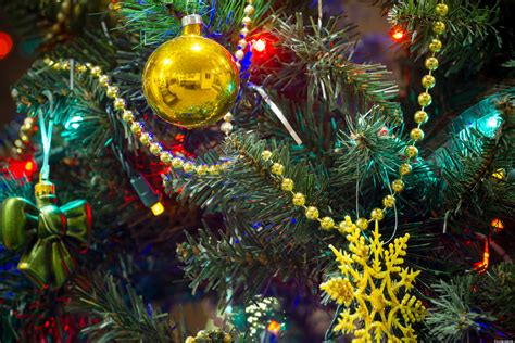 chicago christmas tree recycling city offers service at