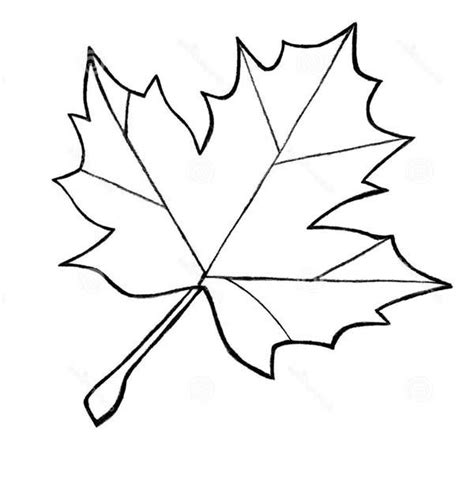 leaf outline coloring page sycamore leaf outline az coloring pages