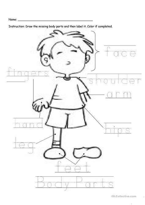 printable label body parts body parts labeling worksheet free esl printable