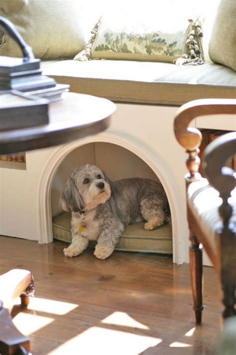 window bench for dog creative ways to incorporate pet items into your home d 233 cor
