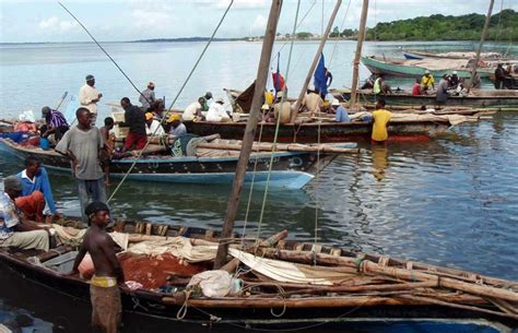fishing boat jobs in south africa 447 best east african dhow images on pinterest