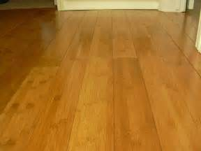 Floor In Bamboo Flooring Pictures And Ideas