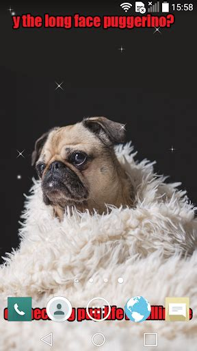 Meme Live Wallpaper - download doggo memes live wallpapers android apps apk