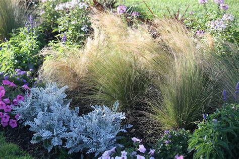 Seaside Garden Ideas Seaside Gardening Choosing Plants Adding Style To Your Landscape