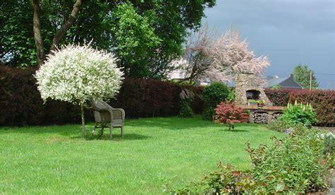 une vue de mon jardin photo 1 15 voil 224 une premi 232 re