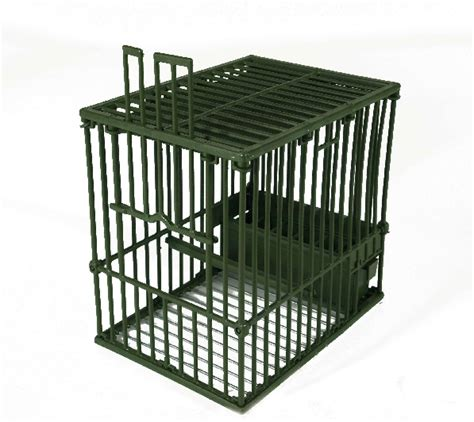 gabbie per uccelli da richiamo gabbie per tordi 28 images acquista gabbie da caccia