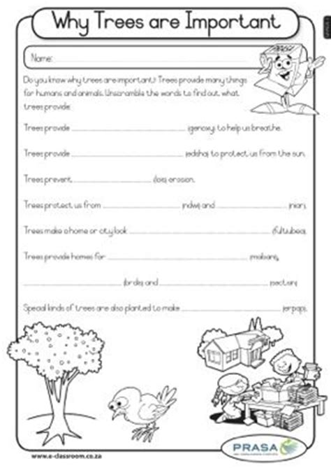 How Many Sheets Of Paper Does One Tree Make - 6 best images of paper recycling worksheet page